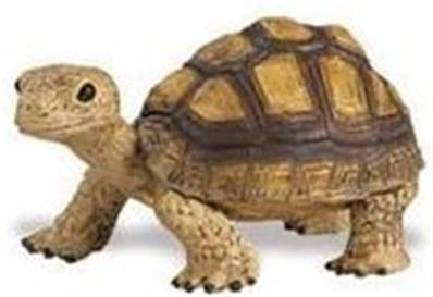 La Tortue figurine Safari
